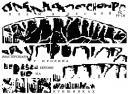 чтение надписей на наконечнике дротика из Канады